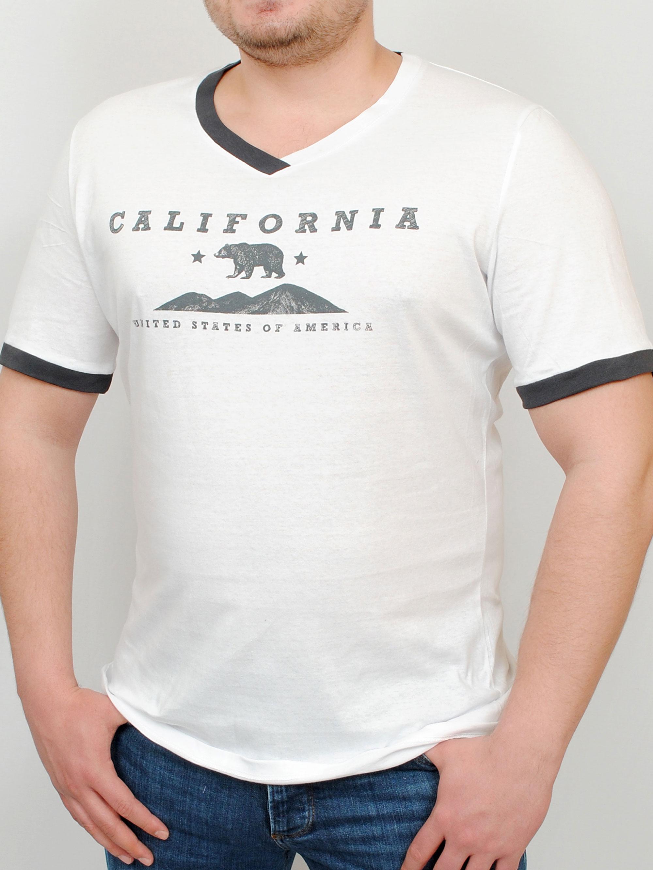 CALIFORNIA футболка св.серый