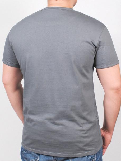 BIGDENIMBROK футболка серый
